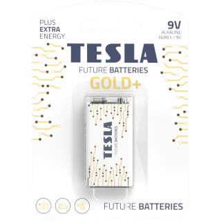 Tesla Future Gold+ 9 Volt Alkaline Heavy Duty Batteries Single Pack