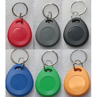T5577 125KHz Writable Thick Key Tag Fob