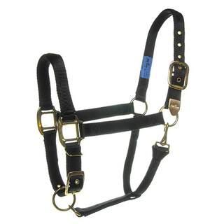 Bainbridge Equine Horse Comfort Fit Adjustable Halters - Nylon