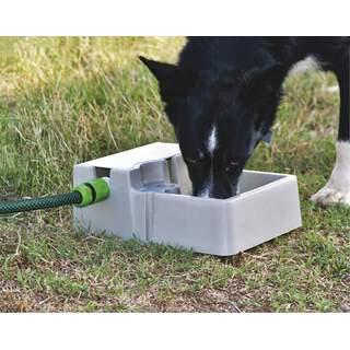 Bainbridge Pets Cats Dogs Automatic Waterer - Pet Bowl