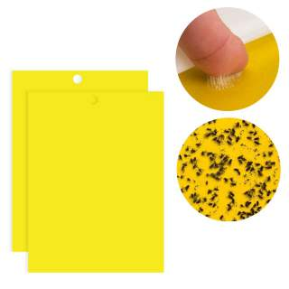 Bulk Sticky Fly Insect Sheet Blowfly Whitefly Thrip Fruit Fly Gnat Leafminer Trap