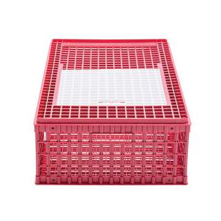 Bainbridge Poultry Transport Crate - Single Door