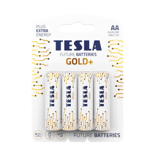 Tesla Future Gold+ AA Alkaline Heavy Duty Batteries - 4 Pack