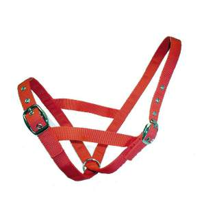 Bainbridge Cattle Cow Halter Webbing